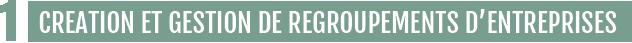 1 CREATION ET GESTION DE REGROUPEMENTS D'ENTREPRISES